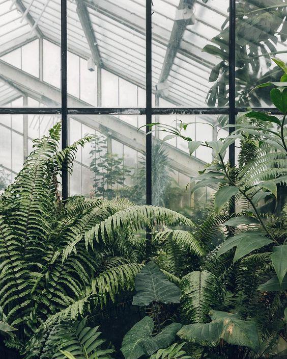 WKND-inspo №12 | Orangeri